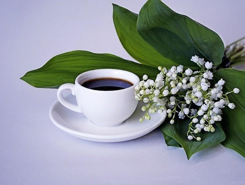 Открытки доброе утро добрый день ландыши