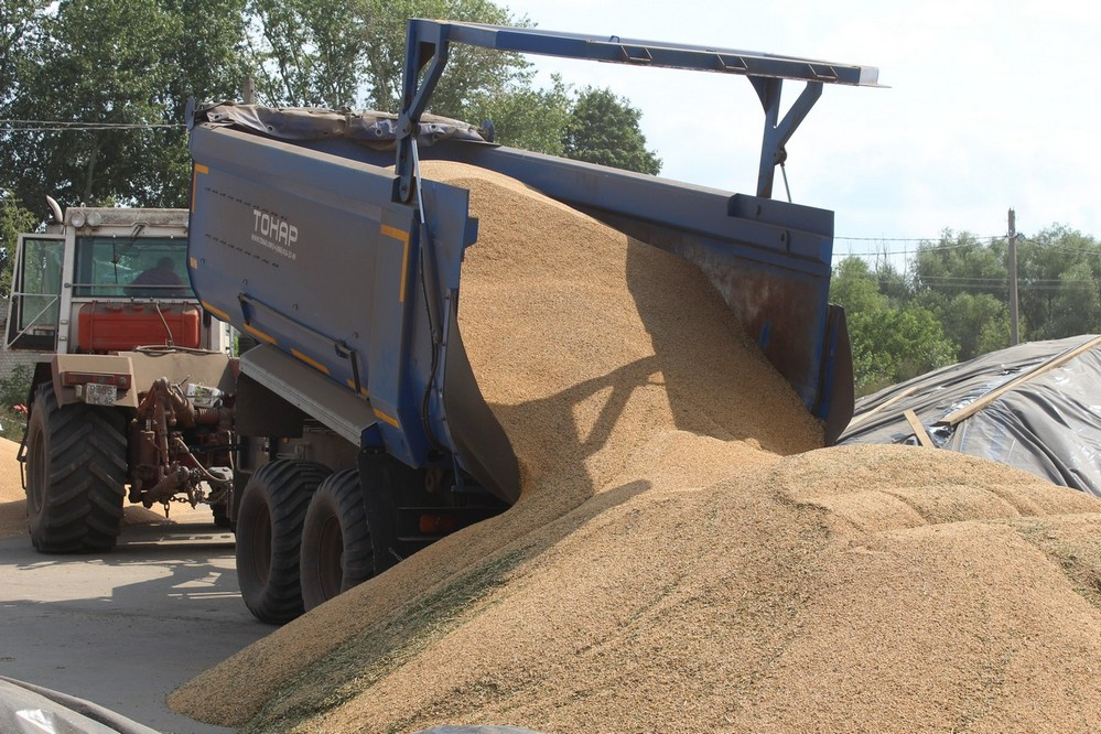 В Рязанской области готовятся собрать рекордный урожай