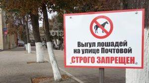 На Почтовой улице в Рязани запретили выгул лошадей
