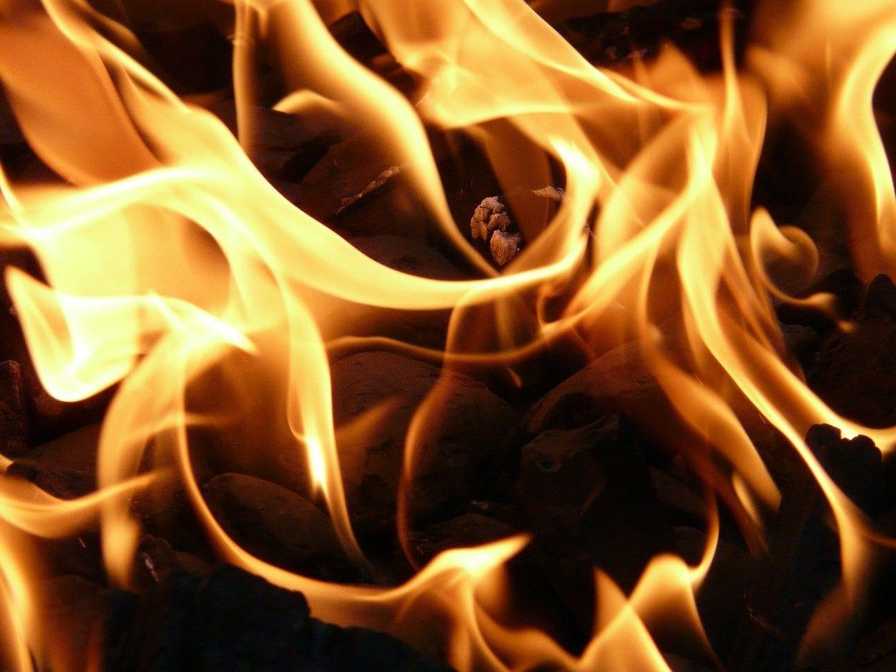 Кегостров в Архангельской области загорелся из-за пала сухой травы